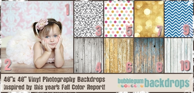 "48"" x 48"" Photo Backdrops - 10 Super Cute Designs!"