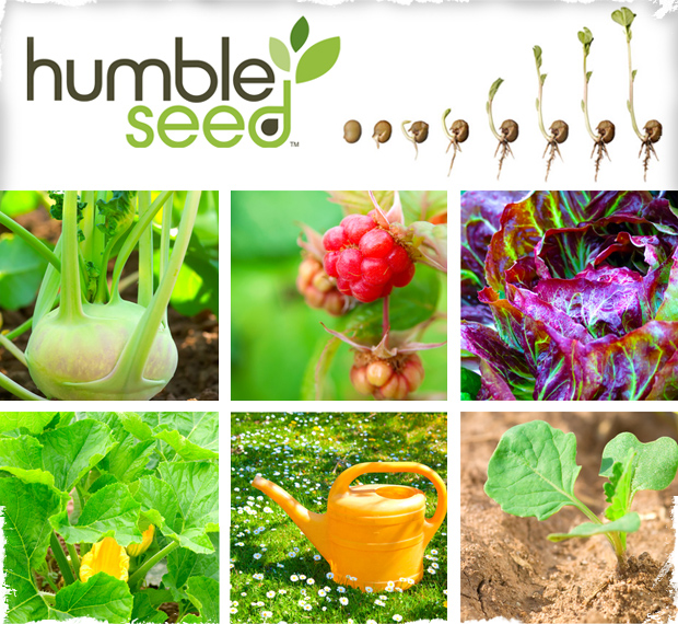 Customized Humble Seed Kit - Plant the Garden of Your Dreams! 10 Seed Packets of Your Choice!